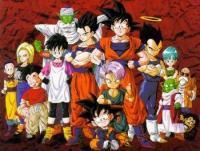 Jeder der Fan der Dragon Ball-Animes (DB/DBZ/DBGT) ist oder auch nur die Games mag, ist herzlich eingeladen! (: