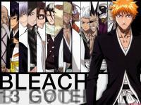 Eine Gruppe, für alle, die Bleach (Anime) mögen